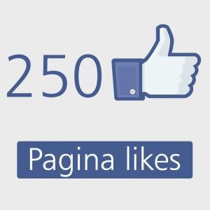 250-facebook-pagina-likes